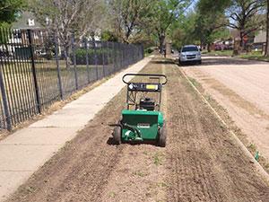 Wichita Lawn Care Company   Lawn Care for Wichita Metro