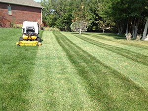 Yard Mowing in Wichita | Wichita Lawn Care Company | Lawn Service for Wichita