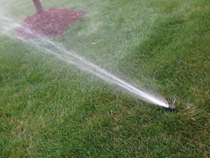 sprinkler systems installations