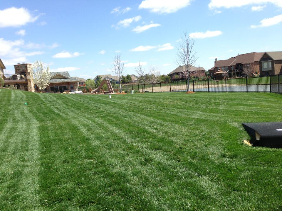 Wichita lawn care yard mowing lawn service wichita ks for Landscaping services