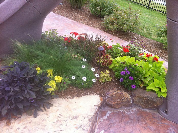 Flower Planting - Wichita