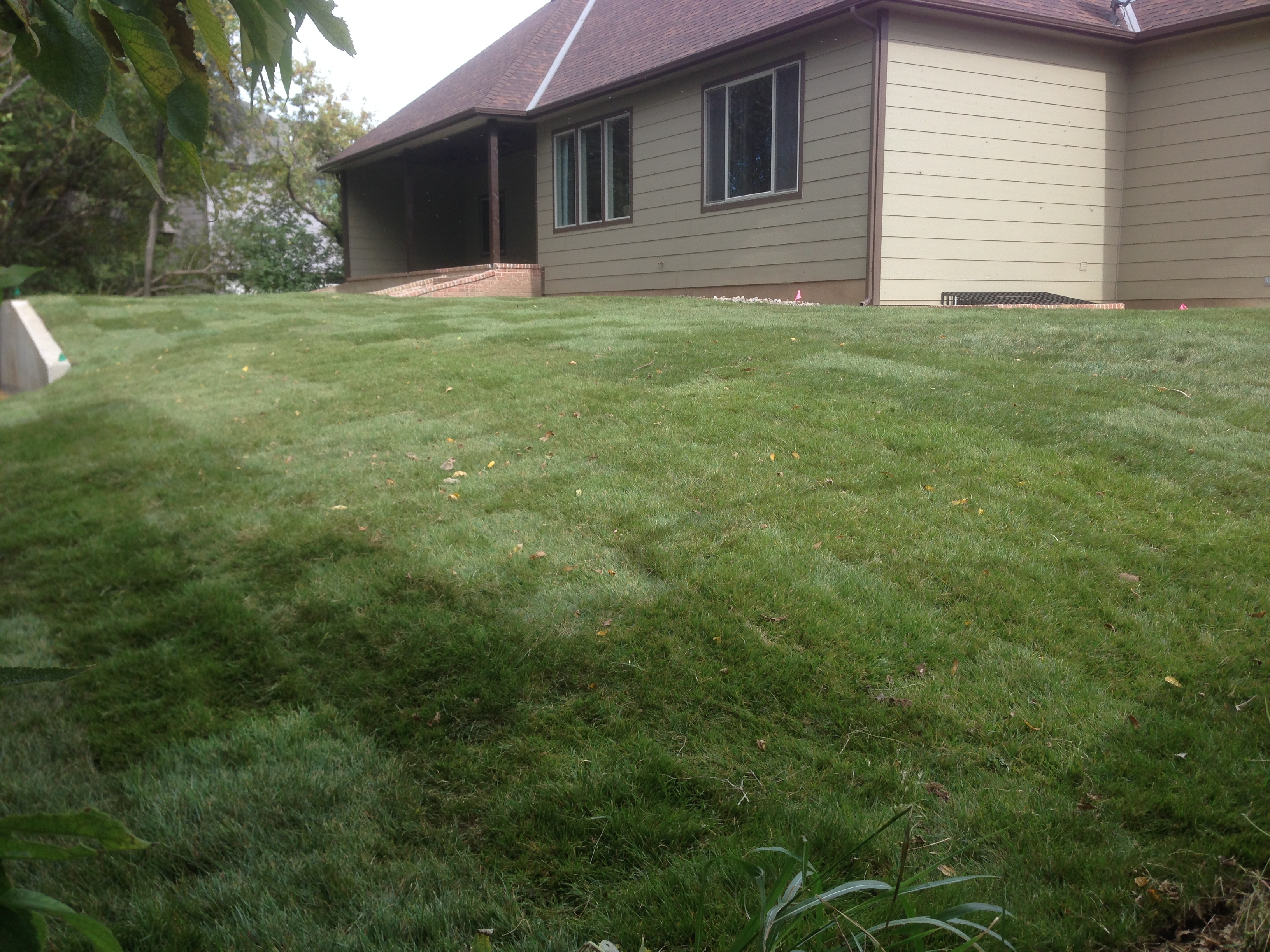 Elegant Lawn Care Wichita Ks