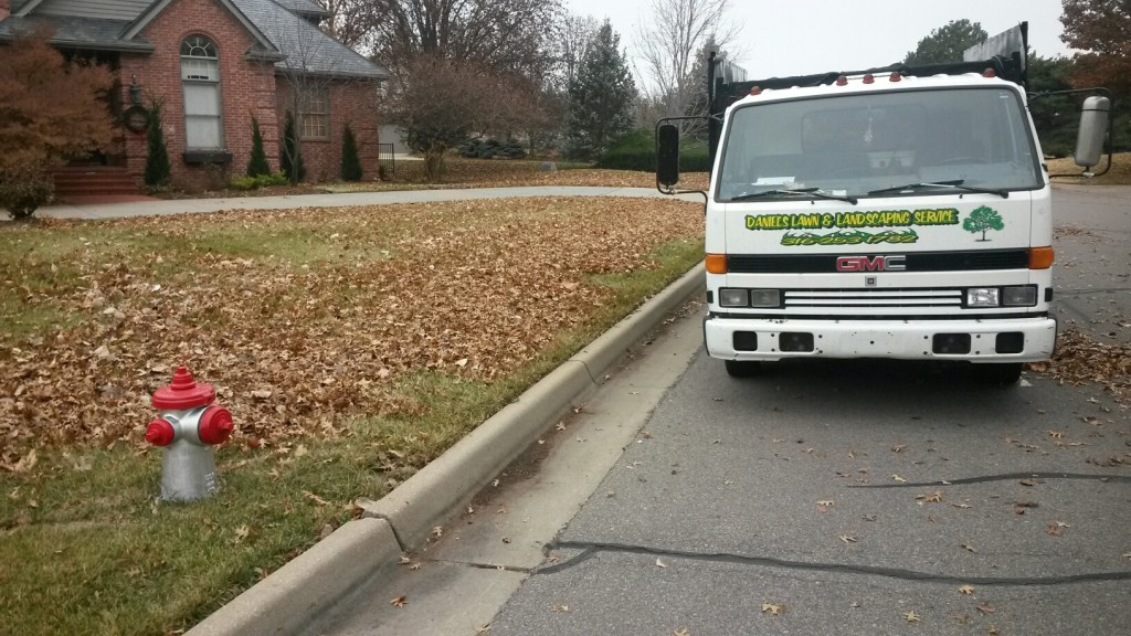 Yard Maintenance - Clean up Leaves - Wichita