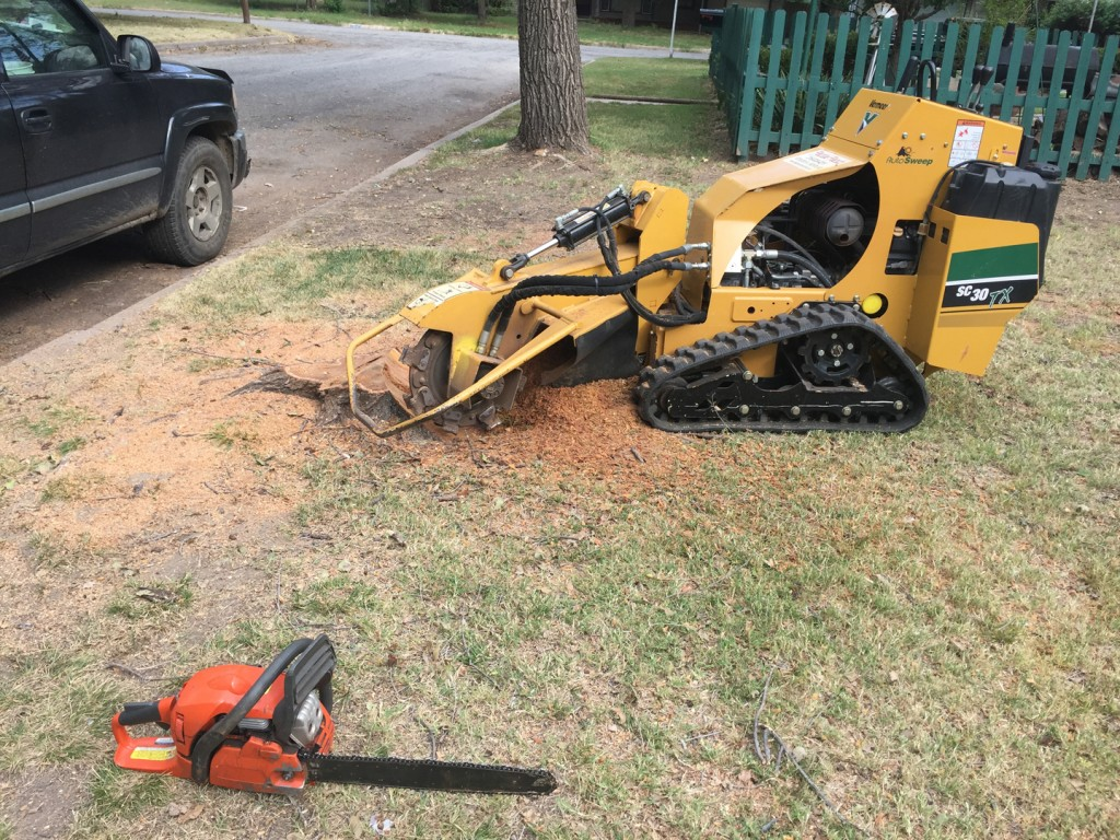 Tree Removal - Wichita