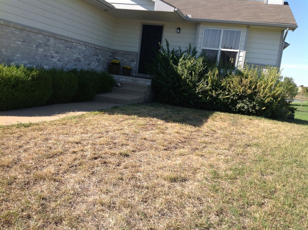 Landscaping Services - Before - Wichita