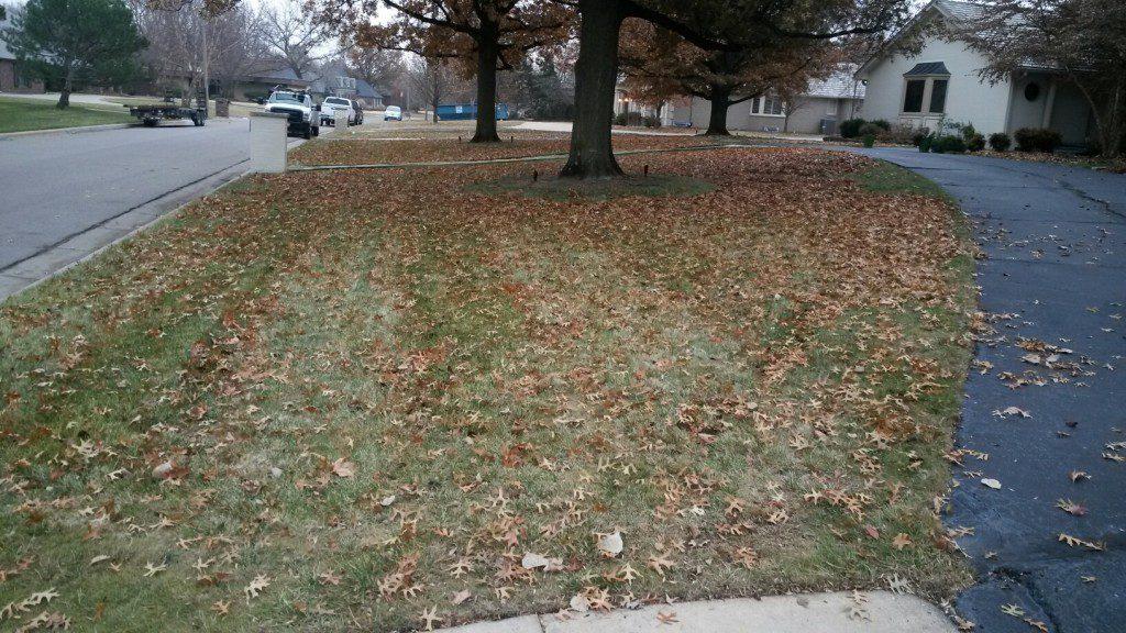 Fall - Yard Clean up - Before - Wichita