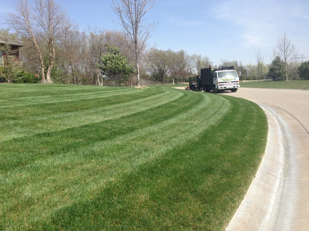 Professional lawn mowing daniels lawn and landscaping for Landscaping services