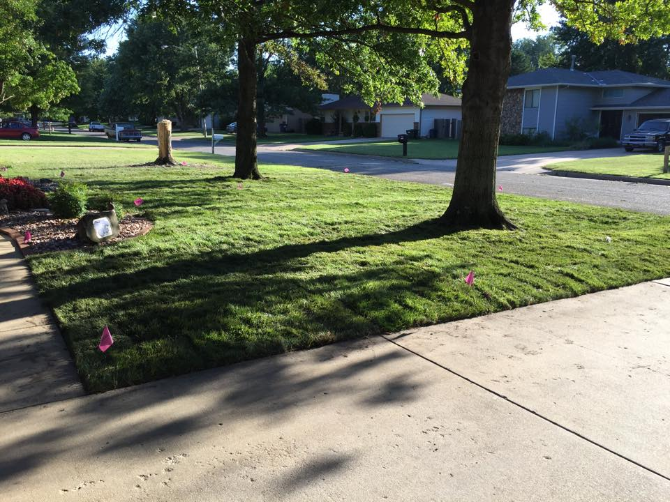 Installing Sod - After - Wichita