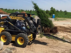 Complete Tree Services - Wichita