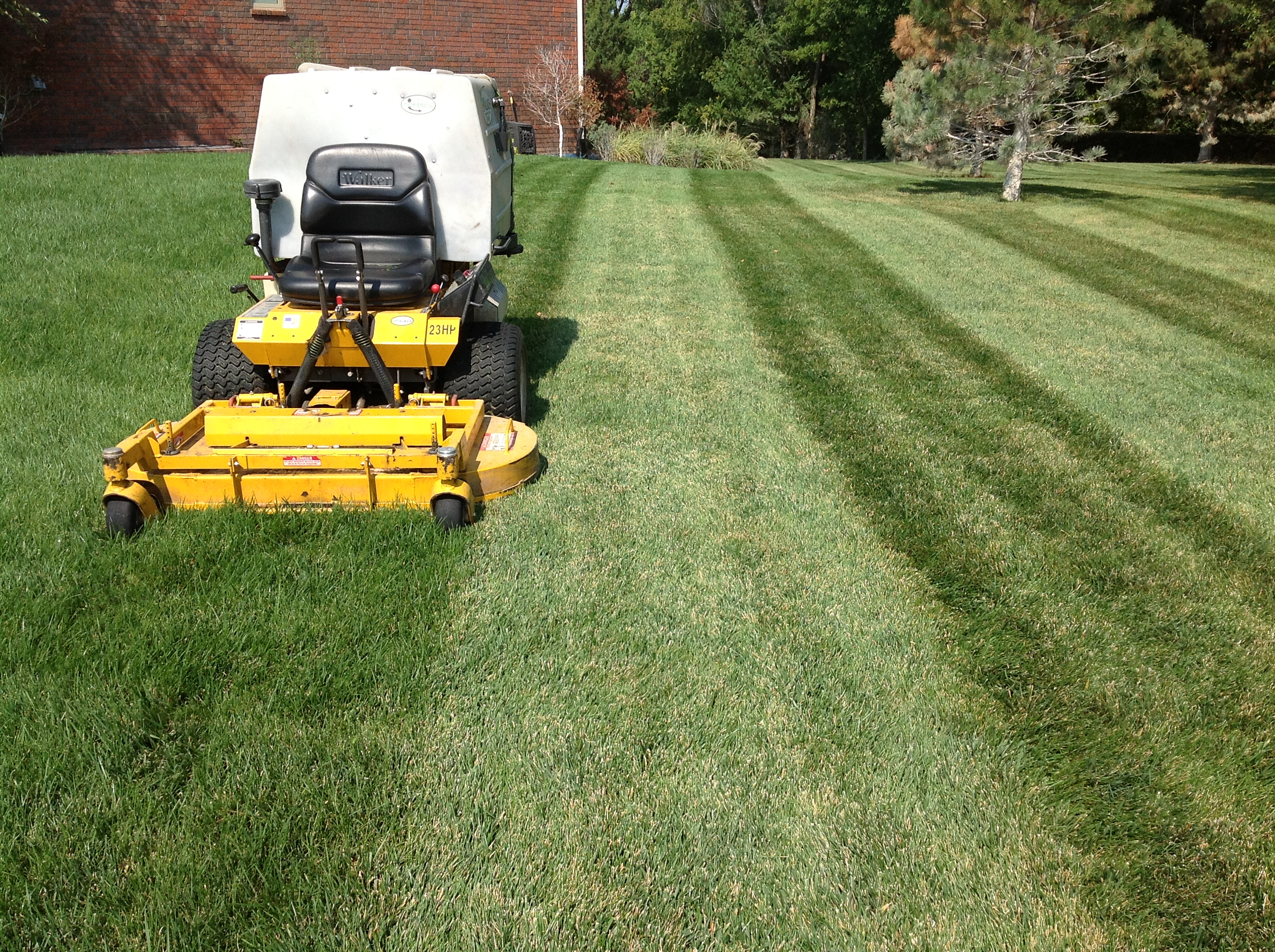 lawn service ideas