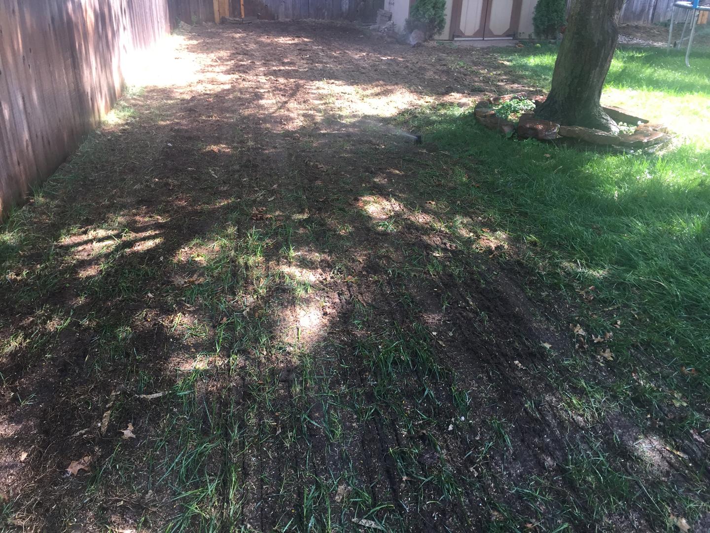 Lawn care service for wichita wichita lawn care company for Lawn and garden services