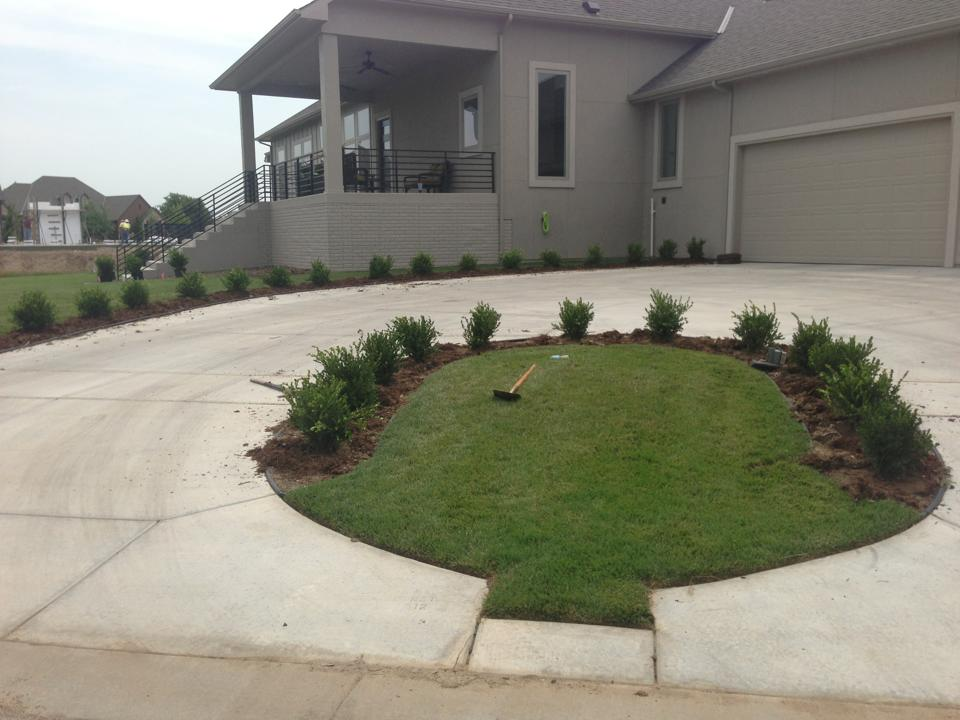 Planted Shrubs - Wichita