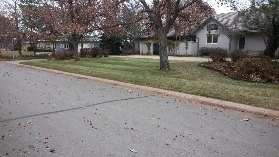 Yard Clean Up - Leaves - After - Wichita