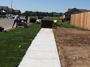 Sod Installation in Wichita
