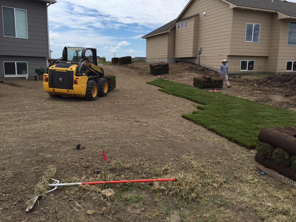 Sod Installation from Daniel's Lawn & Landscaping Service