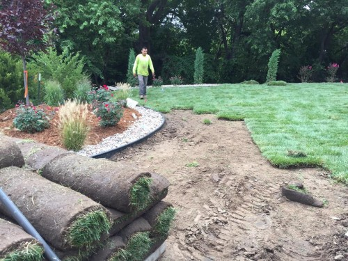 Blog daniels lawn and landscaping services for Lawn and garden services
